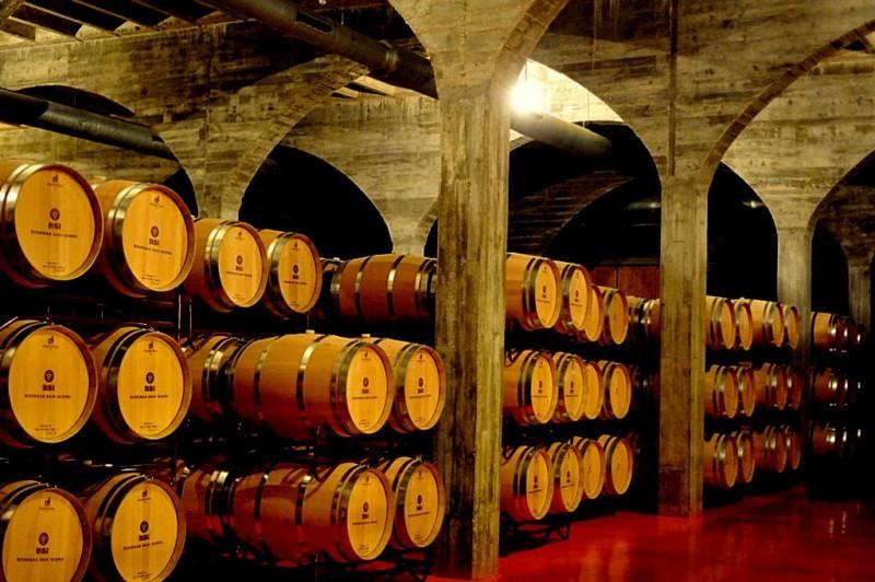 Open daily: La Ruta del Vino or Wine Route of Jumilla: visiting the wineries