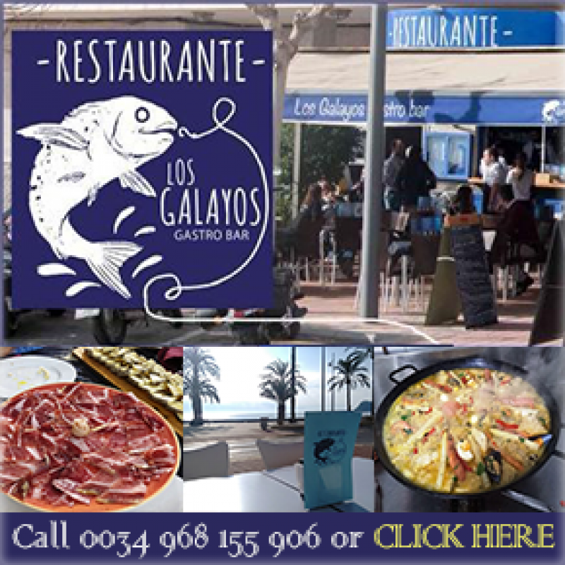 Summer dish of the day and 10.50€ lunchtime Menú del Día at Restaurante Los Galayos on the seafront in Puerto de Mazarrón