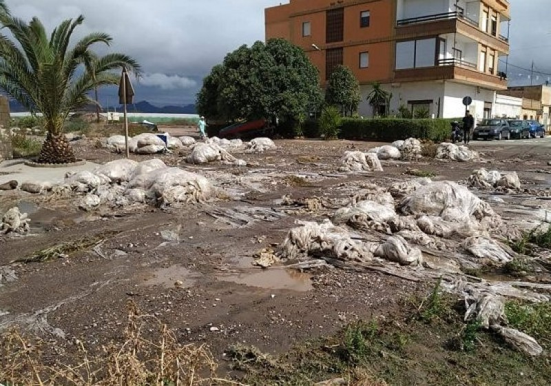 <span style='color:#780948'>ARCHIVED</span> - Heavy rain and careless farmers blamed for plastic washed up in Puntas de Calnegre