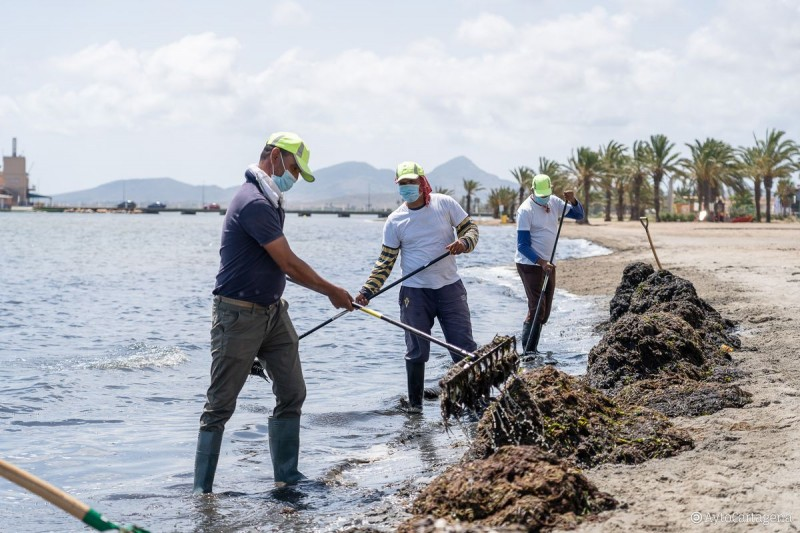 <span style='color:#780948'>ARCHIVED</span> - Weary municipal councils agree to clean deposits from Mar Menor themselves