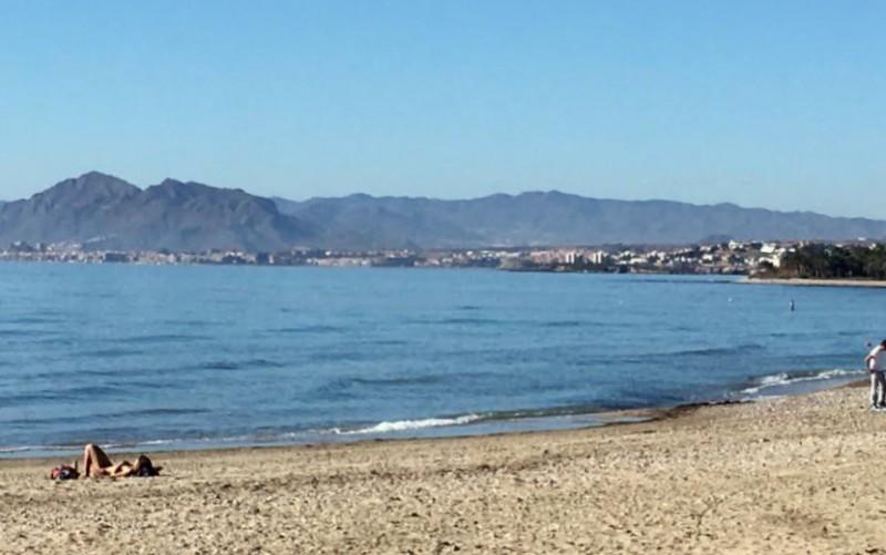 Murcia Today Weekly Bulletin 30th January