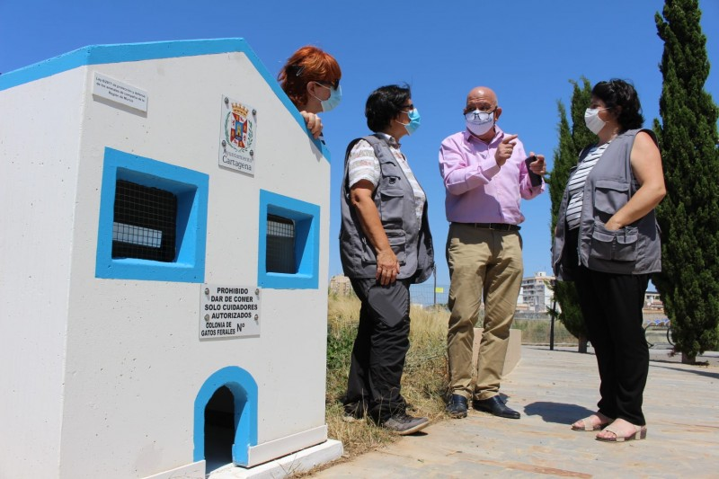<span style='color:#780948'>ARCHIVED</span> - New cat houses for ferals installed in Islas Menores and the Archaeological Park of Molinete