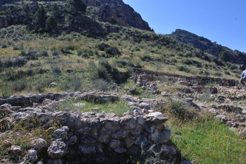 A history of Jumilla