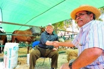 A history of Fuente Álamo